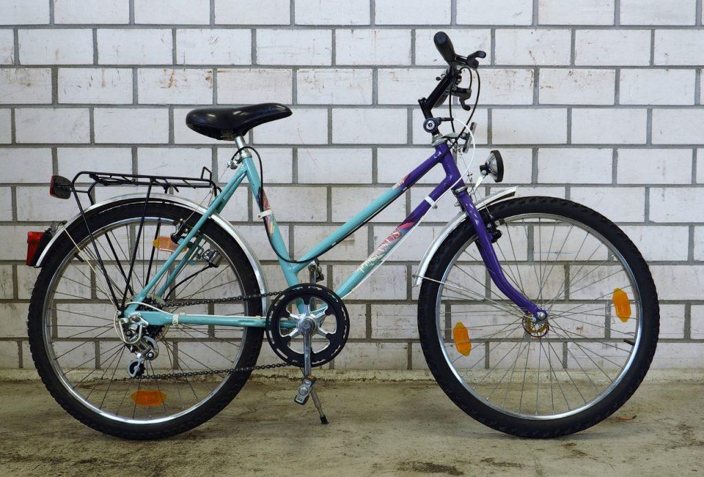 Pegasus MTB Kinderrad